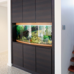 Built in Aquarium